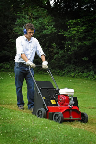 Lawn Scarifier Petrol South West Hire And Sales