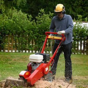 Stump Grinder Archives South West Hire And Sales